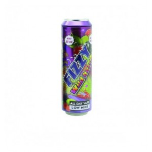 FIZZY WILD BERRIES 55 ML